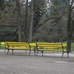 This photo shows yellow benches in a big beautiful park. We can see the contrast between the beautiful and the ugly. Indeed, these yellow benches do not match the magnificent trees. Besides, the forest is quite dark while the benches are brightly colored. I took this picture because I was surprised and a bit shocked at seeing these modern and cold metal objects in such a natural environment. The City decided to install such modern benches to give dynamism to this environment and to attract younger people and families because many inhabitants had left the town in the past decades for lack of employment. To finish, the park and these benches benefit the population: people can sit, relax and enjoy the place. Nowadays, more and more families settle in Graulhet.